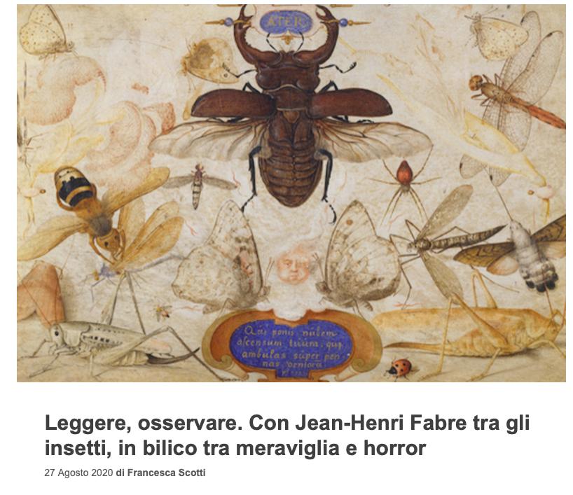 Con Jean-Henri Fabre tra gli insetti, in bilico tra meraviglia e horror_ di Francesca Scotti